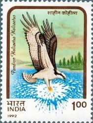 INDIA – 1992, India Birds of Prey error stamp – worth US.$.16,172